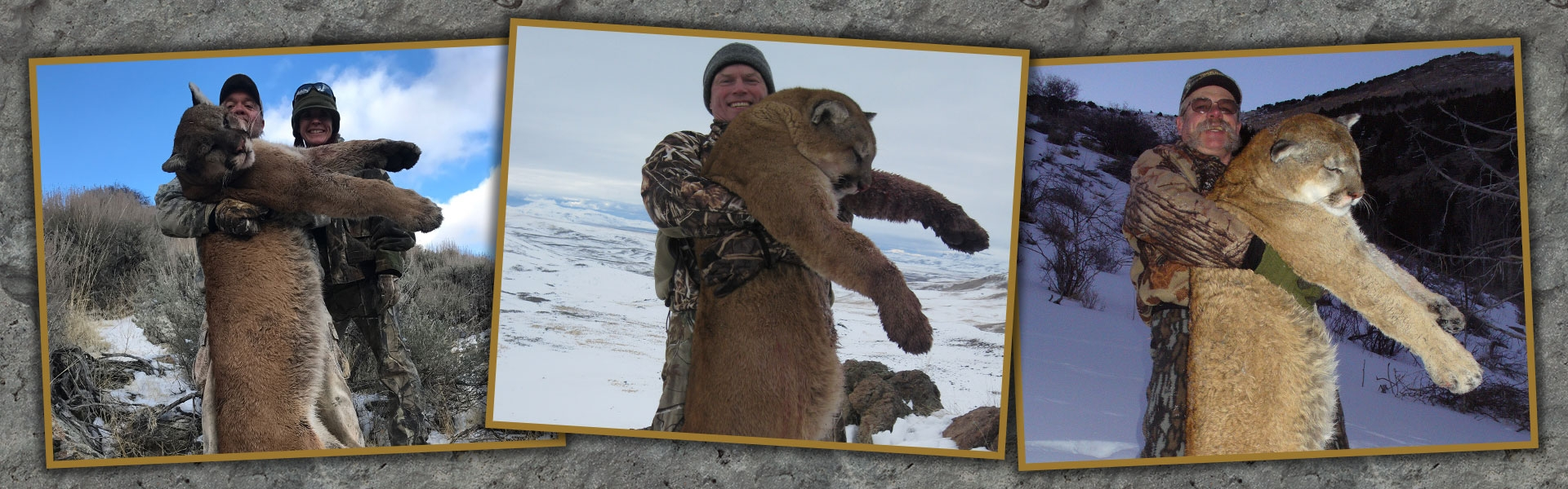 Nevada Mountain Lion Hunts