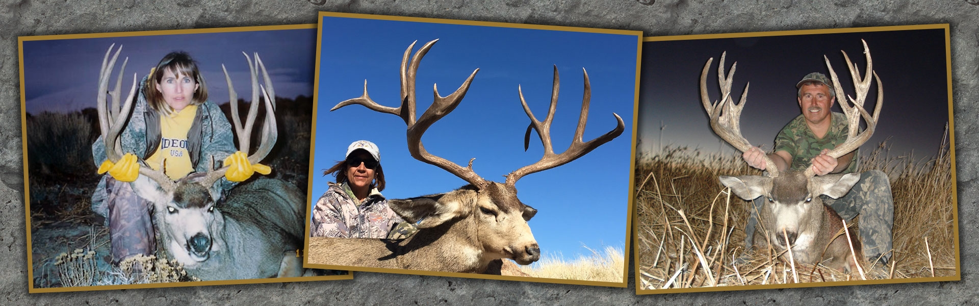 Nevada Mule Deer Hunts